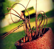 Cowboy Ribbon by Tonye Banks