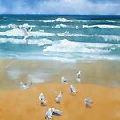 seagulls on coolum beach by Almeta