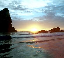 Sunset, Cannon Beach Oregon, USA 3 by Forrest  Ray