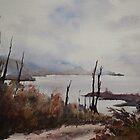 Tassie Highlands by Pauline Winwood