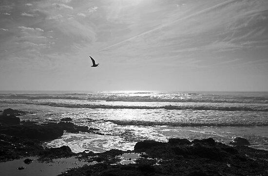 Big Sky by Michael Beckett
