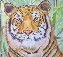 Tiger in Jungle by FranEvans