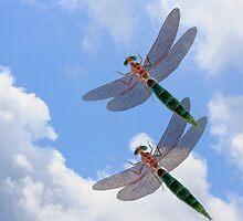 Dragonflies Blue Skies by SmilinEyes