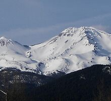 Mt Shasta April 24, 2010 by CBensemaJohnson