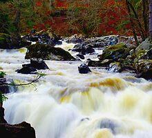 Dunkeld, Scotland by Kevin Meldrum