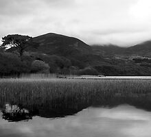 Killarney National Park - Lake by espanek