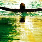 the swimmer - evening race by todski2