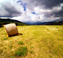 Field around Alfedena (AQ), Abruzzo, Italy by Fabio Catapane
