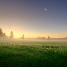 Dreamy Sunrise by Mikko Lagerstedt