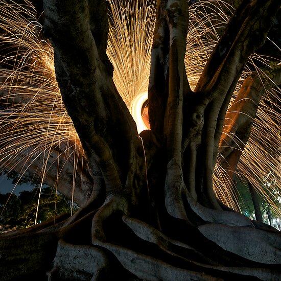 Fire Angel Xmas Tree II by Alexander Kesselaar