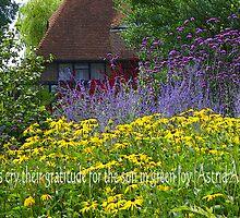 Summer joy garden by walstraasart