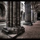 Kirkstall Abbey #05 by shutterjunkie