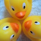 Quack? Quack. Quack! by Charlotte Stevens