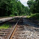 Walking the Rails by Martha Andreatos