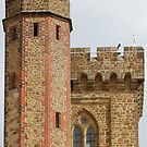 Leith Hill Tower by Paul Morley