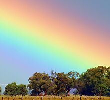 Where is my pot of gold? by Julie Sleeman