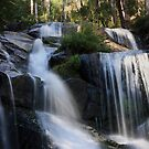 Toorongo Falls 2 by Fiona Kersey