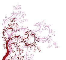 Magnolia by Richard Laschon