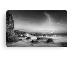 Noosa Surfer Girl Canvas Print