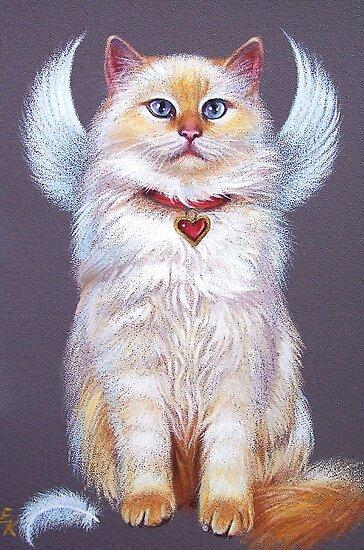 Valentine's angel (Ragdoll Cat) by Elena Kolotusha