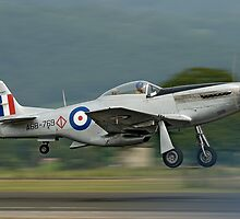 P 51 Mustang by Barry Culling