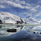 Portage Lake, Alaska by Andy Mueller