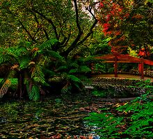 Autumn Colours at Alfred Nicholas Memorial Gardens by Jason Green