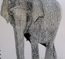 The Asian Elephant by GEORGE SANDERSON