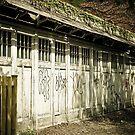 Old Garage by Mark David Barrington