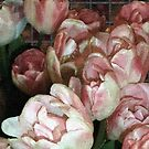 Dutch Tulips, Dutch Tile by RC deWinter