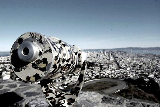 Twin peaks San Francisco by Amanda Huggins