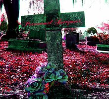 The Beauty of a Tragedy by Paranormal Anonymous