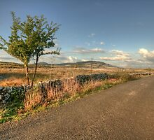 Mullaghmore and Knockanes by John Quinn