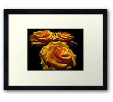 Roses for Mother. Framed Print