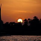 Sunset on the River Nile by armiller007