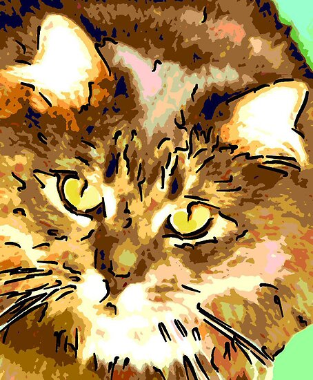 Cat Looking Up by Lisann
