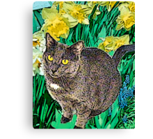 Cat and Daffodils Canvas Print