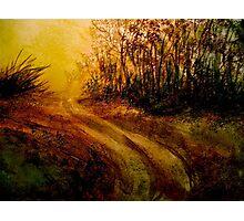Landscape Hardy..The Walk Photographic Print