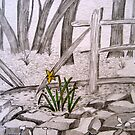 Daffodil  by Marita McVeigh