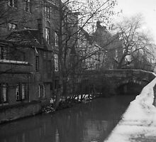 Canal houses, Brugge by Maggie Hegarty