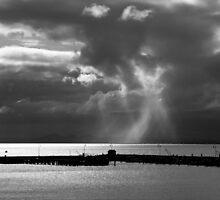 Port Arlington Pier by Gwynne Brennan