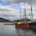 Boats on Loch Fyne by Carol Bleasdale