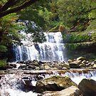 Waterfalls in Tasmania by Elaine Game