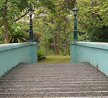 Ninoy Aquino Park and Wildlife Nature Center bridge by walterericsy