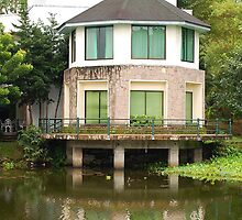 Ninoy Aquino Park and Wildlife Nature Center Lagoon Cottage by walterericsy
