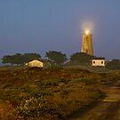 Piedras Blancas Light Station by Ann J. Sagel