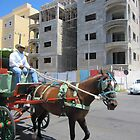 Cabo San Lucas, Mexico Carriage Ride by wanderlust54