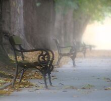 Lonley Bench by VladimirFloyd
