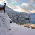 Alpine moods by Ian Middleton