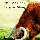 Father's day card with wooly bully by Moonlake
